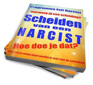 Scheiden van een narcist, hoe doe je dat? Ebook